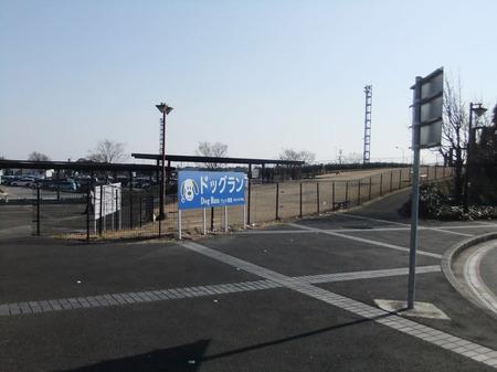 Dscf8975
