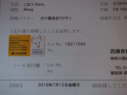 P7150067