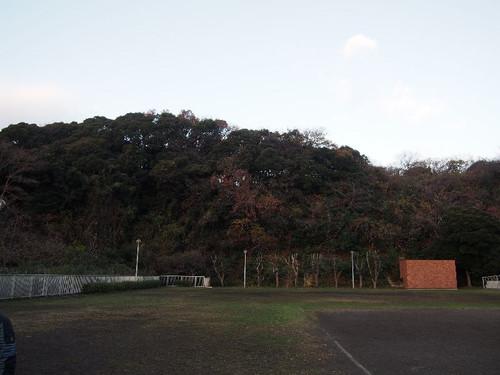 Pc200594