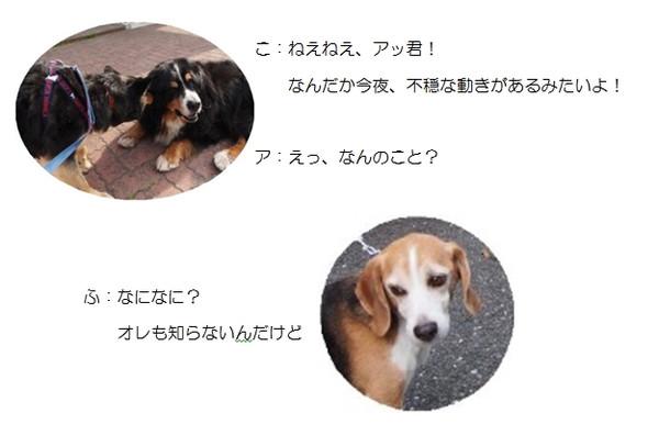 20160131192047_3